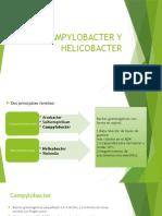 Campylobacter y Helicobacter