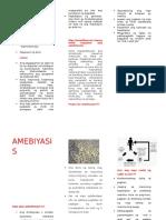 82168929-amoebiasis.docx