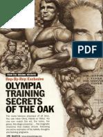 Arnold training guide [Eng].pdf