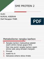 Metabolisme Protein 2