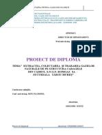 Proiect de Diploma Grigore Ionut 20 06 2016