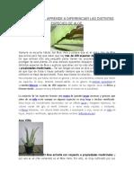 Lectura Especies Aloe Vera