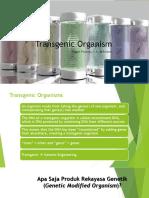Transgenic Organism - Anggun F