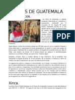 etnias guatemaltecas