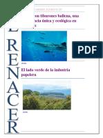 Parques Naturales.docx Periodico Final Corre