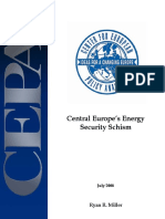 Central Europe Energy Security Schism20080724