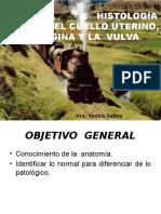 ANATOMIA E HISTOLOGIA NORMAL DEL CUELLO UTERINO. PRIMERA CLASE POST GRADO.pptx