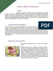 recetas_artesanas.pdf