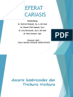 ascaris lumbricoides dan trichuris trichiura
