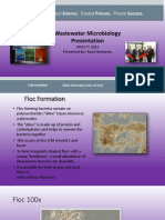 WW Microbiology Presentation