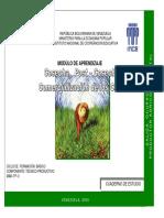 Cosecha, Postcosecha y Comercialización de Los Cultivos