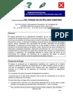valoracion del biogas.pdf