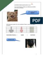 108838069-Gramatica-El-preterito-perfecto-Nivel-Basico-A1-A2.pdf