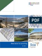 SCIA Engineer Beta Factors