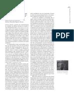 DRUCK g. a Perda Da Razão Social Do Trabalho - Terceirização e Precarização. - RESENHA