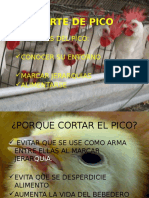 CORTE_DE_PICO[1]