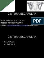 CINTURA ESCAPULAR.pptx