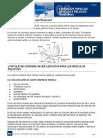 SUELO PELVICO.pdf
