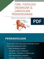 Anatomi Dan Fisiologi Mendengar & Gangguan Pendengaran