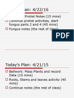 protist and fungi notes