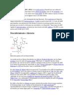 El Ácido Ribonucleico