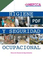 Higiene y Seguridad Ocupacional