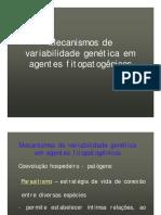 Mecanismos de Variabilidade Genetica-110907