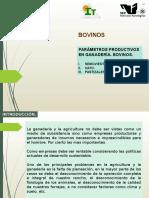 Parámetros Productivos Bovinos 2016