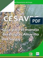 Guia Para El Manejo de Pulgon Amarillo Del Sorgo