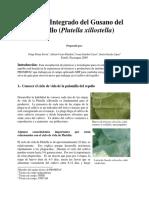 Manejo Integrado Plutella Xillostella en El Cultivo Del Repollo