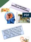 Psixologia Presentación1 20161