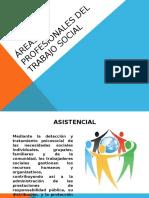 ÁREAS PROFESIONALES DEL TRABAJO SOCIAL.pptx