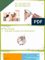 Causas de Mortalidad en Mexico
