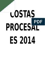 Costas Procesales 2014