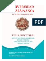 DC FernándezEncinas JREstructurasMetalicas