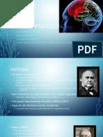 neuropsicología UVM TEXCOCO