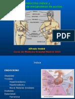 Endocrino Indice y Acciones 2013