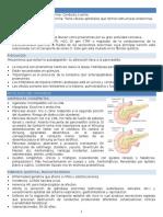 Patologia Del Pancreas