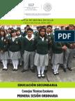 1a Sesioìn SECUNDARIA CTE 2016.pdf