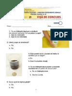 Concurs_experimente_geniale_0-IV test_barem.pdf