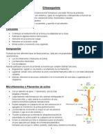 Citoesqueleto-P.pdf