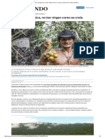 La Selva Amazónica, No Tan Virgen Como Se Creía _ Ciencia Home _ EL MUNDO
