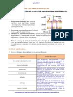 B10 Movimento de Substancias Atraves de Uma Membrana Semipermeavel 2a Parte - Com Respostas