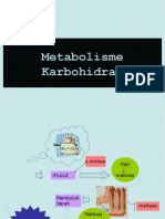 metabolisme-karbohidrat-2010