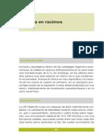 cefalea en racimos.pdf