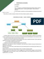 ESTRUCTURA_DE_LA_PALABRA.doc