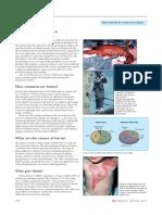 burns_-_general_article_fro.pdf