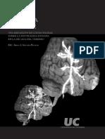 1) Eloy Gómez Pellón, Mente y Cultura, en Juan García-Porrero (editor), Genes, cultura y mente Una reflexión multidisciplinar sobre .pdf