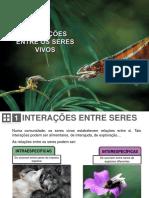 05. Interações Entre os Seres Vivos.pdf