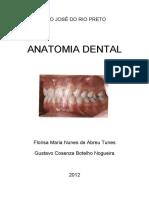 apostila-anato-dental.pdf